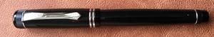 Pen Web 300px.jpeg