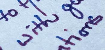 Text Sheen Web 350px.jpg