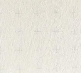 Paper Web 250px